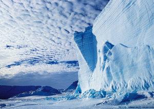 남극의 잃어버린 세계 개봉 박두?
