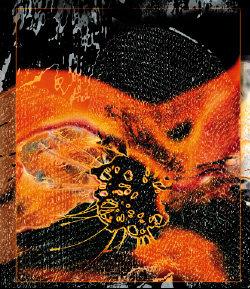 공허와 숭고-마크 로스코의 예술