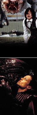 상어…오징어…똑똑한 생물?