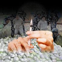파멸 부르는 해외 마약범죄의 덫