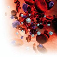 생명 가로막는 죽상혈전증 요주의
