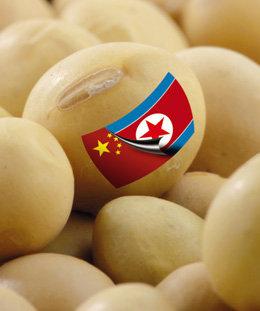 수입 콩나물콩 원산지 실종사건