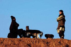침략자와 전쟁, 적극적 평화전략