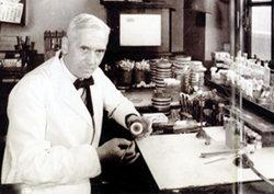 20세기 생물공학의 흐름