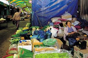한국 경제 봄은 멀었나