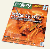 뭐? 미국산 늙은 쇠고기 한국만 먹는다고?