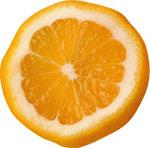 안마시술소 인턴사원 힘겨운 오렌지(?) 생활