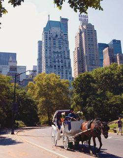 맨해튼 부동산은 불황 무풍지대?