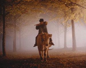 가축에 대한 인간의 횡포와 만행