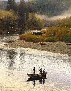 캐나다 밴쿠버 아일랜드 통나무 로지와 에코투어
