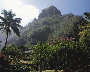 하와이 카우아이 섬 영화 '쥬라기 공원'의 무대