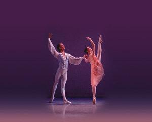 숨막히게 아름다운 발레의 모든 것 外