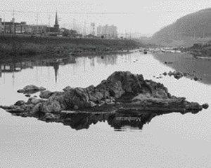 비빔밥 이데올로기 보편적 풍경
