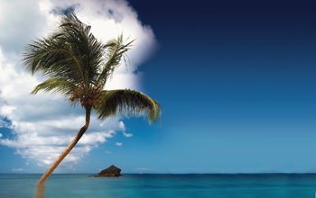한여름, 토바고 Midsummer, Tobago
