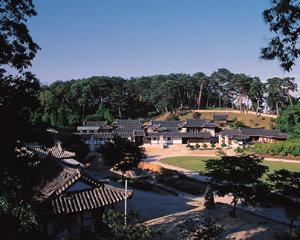 2008 대한민국 친척 보고서 핏줄의 재발견
