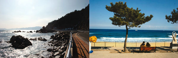 '문화 식민지' 그 바닷가에도 아름다운 추억은 있다