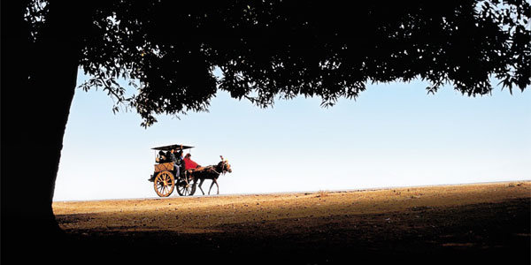 평화가 사는 아름다운 시골마을