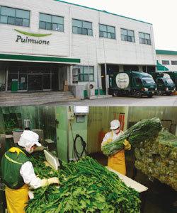 땀으로 일군 유기농 채소, 깨끗하고 안전하게 가공, 신선하게 유통!