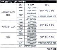 """""""상식 이하 CDO·CDS 투자 1조5000억 손실 냈다"""""""