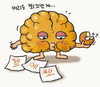 평생 뇌의 10%만 사용한다고?