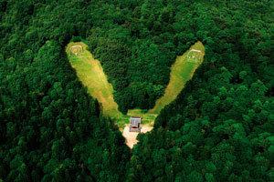 두 능에 하나의 정자각… 천연박물관 광릉숲 거느려