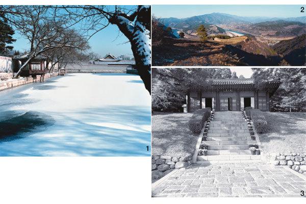 한국의 미는 동네 뒷산에 있었네
