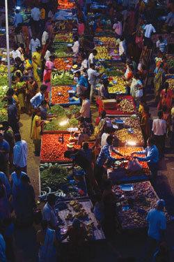 인도가 '태양에너지'를 사랑한 이유
