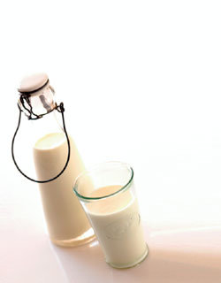 우유>>> 너도나도 A급 마케팅 치열해乳!