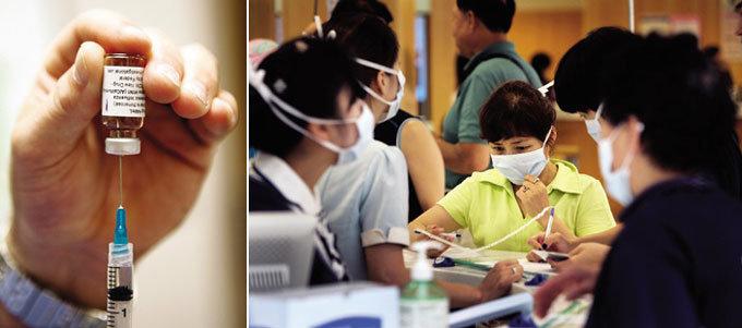 신종플루-독감 방어 고려인삼의 면역력 실제 입증