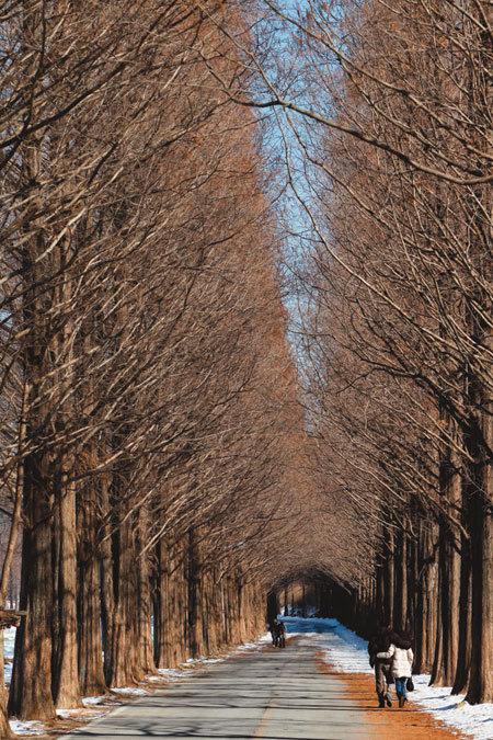 竹이는 사연 … 이국적 분위기 … 시간이 날 껴안아주더라