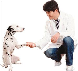 가족 같은 반려동물에 고품격 의료서비스 제공