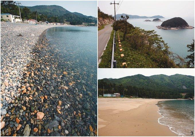 해송과 해무(海霧) 조화 평화롭고 환상적 분위기