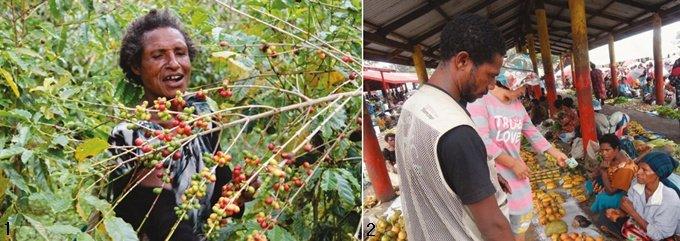 '커피 천국' 파푸아뉴기니를 아세요?