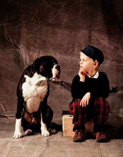 개, 인간과 눈 맞추고 친구로 맘 나누고
