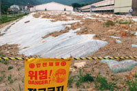 환경부, 가축 매몰지 침출수 유출 은폐 의혹 外