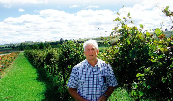 유기농 포도로 만든 와인 땅 살리고 인간도 살린다