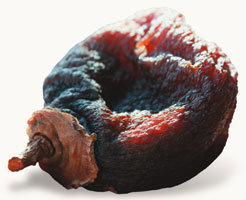 때깔 고운 분홍색 곶감 옛날 맛은 어디로 갔어?