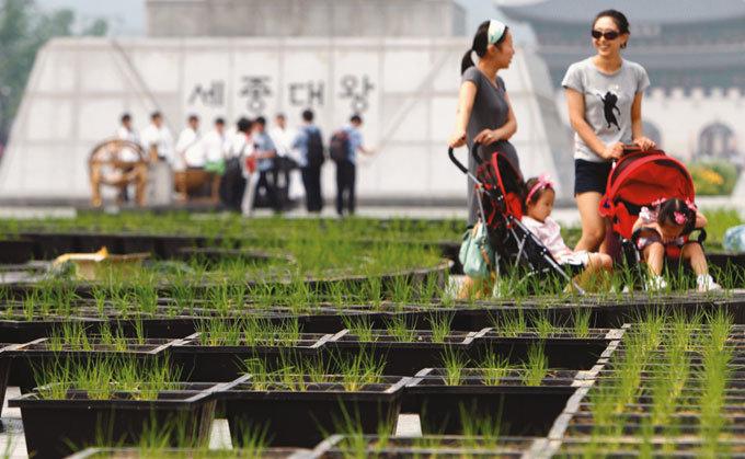 도심 속에서 농업 배우기