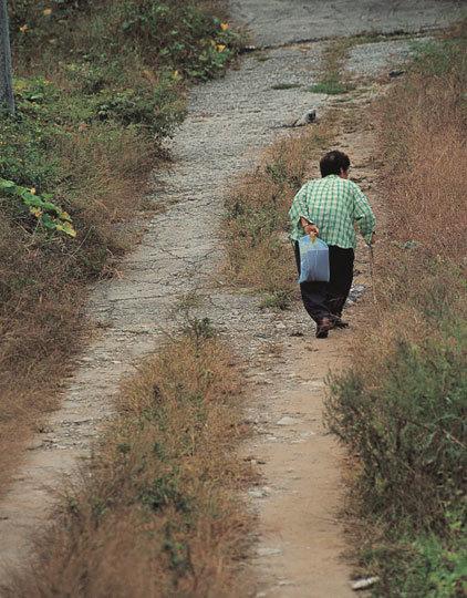 비정한 길