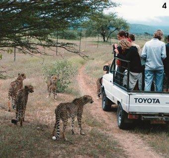 '동물의 왕국' 나미비아엔 힘바족과 야생이 산다