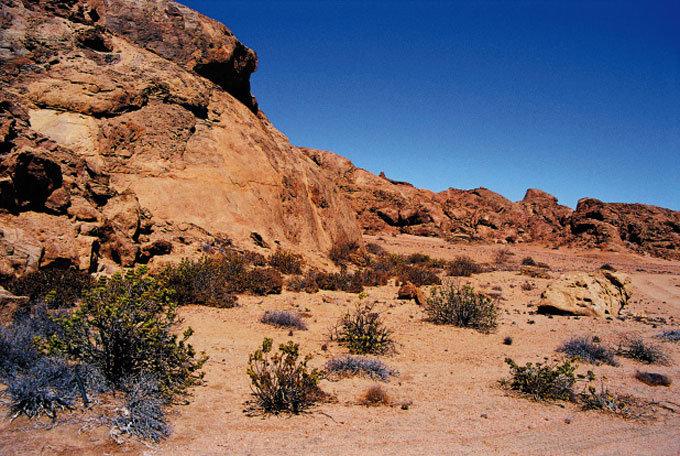 오렌지색 사막언덕 황홀한 세상과 만나다