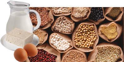 완전 단백질 '닭 가슴살' 근육 만들기 필수식품