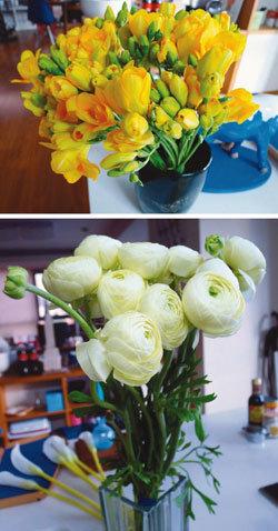 신문지에 둘둘 꽃다발과 함께 봄이 옵니다