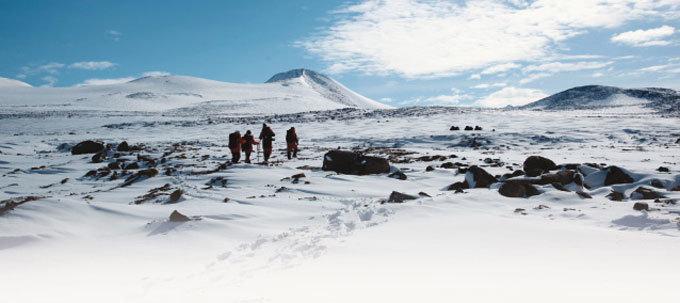 월동 특명! 남극 기후 변화를 체크하라
