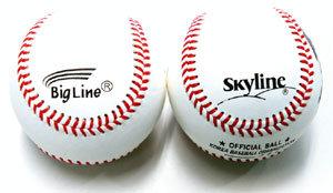 반갑다, 꽃보다 야구!
