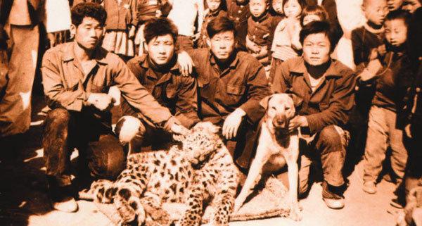 한국 표범, 너 정말 멸종했니?