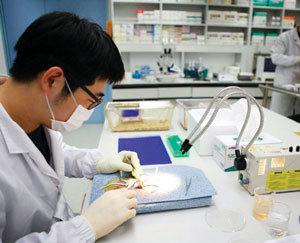 의약품 특허를 깨라! 토종 제약사들의 반란
