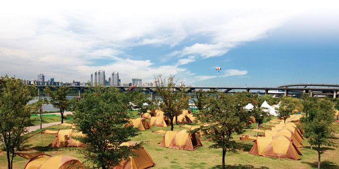 탁상행정에 뿔난 캠퍼들의 항변