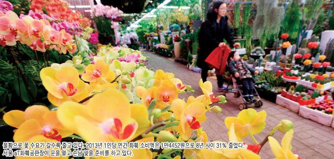 꽃을 왜 사요? 위기의 화훼업계 각자도생