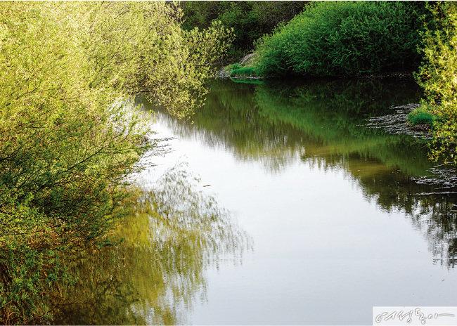 봄처럼 강물처럼 마음은 너울거리고 창 녕